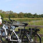 Soorten elektrische fietsen die je kunt kopen